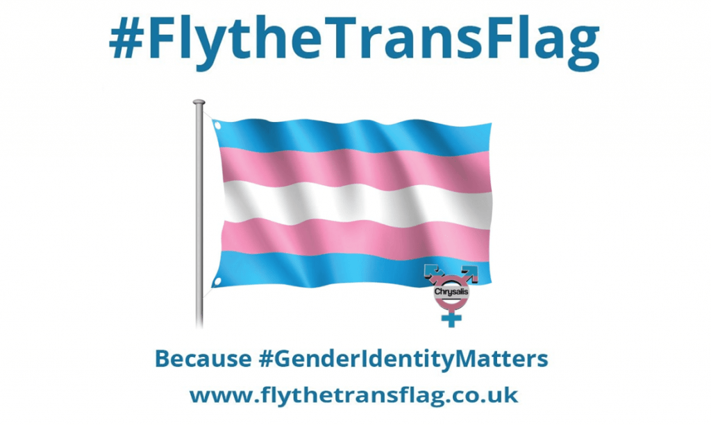 Fly the trans flag poster