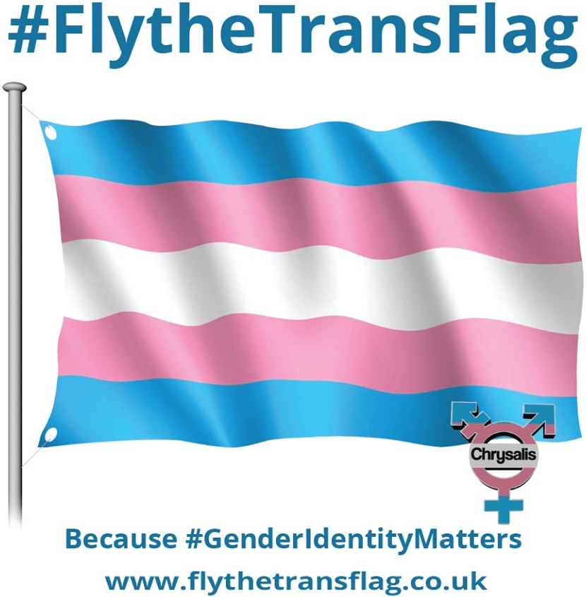 Fly The Trans Flag