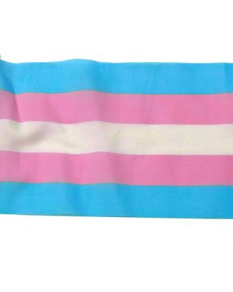ChrysalisGIM Transgender Waving Flag