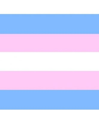 Flag with horizontal stripes in trans colours. From top: blue, pink, white, pink, blue