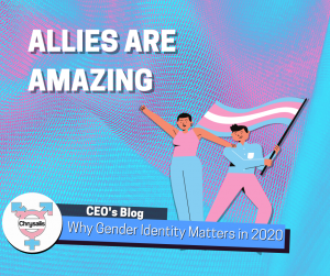 "Cartoon style illustration of two people waving a transgender pride flag. Text reads ""Allies are amazing. CEO's blog. Why Gender Identity Matters in 2020"