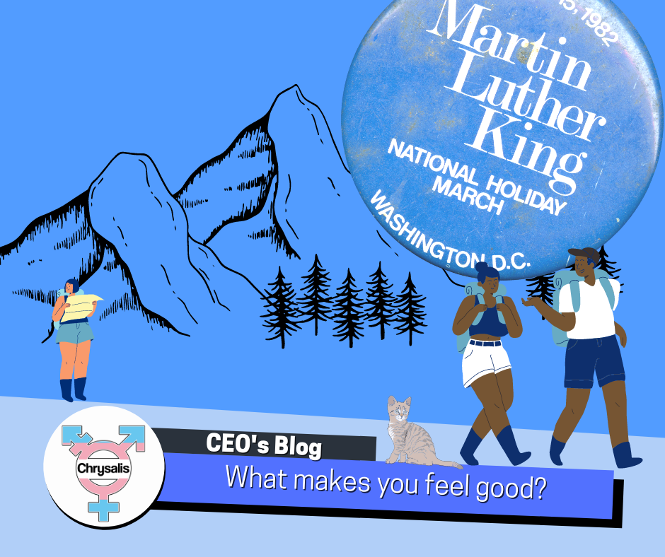 """A blue Martin Luther King Jr badge hangs in the corner of the image. Beneath is an illustration of three hikers passing through a cold mountain range, they have a cat with them. At the bottom the title reads """"CEO's blog. What makes you feel good?"""""""