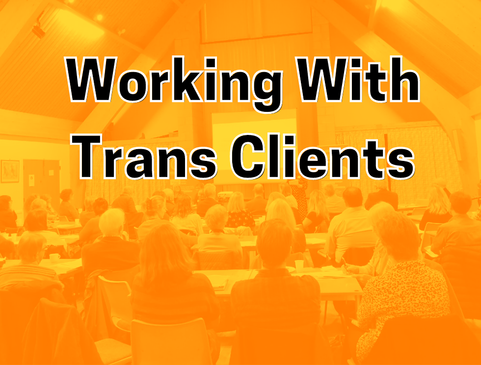 Working With Trans Clients: Room full of people viewing presentation