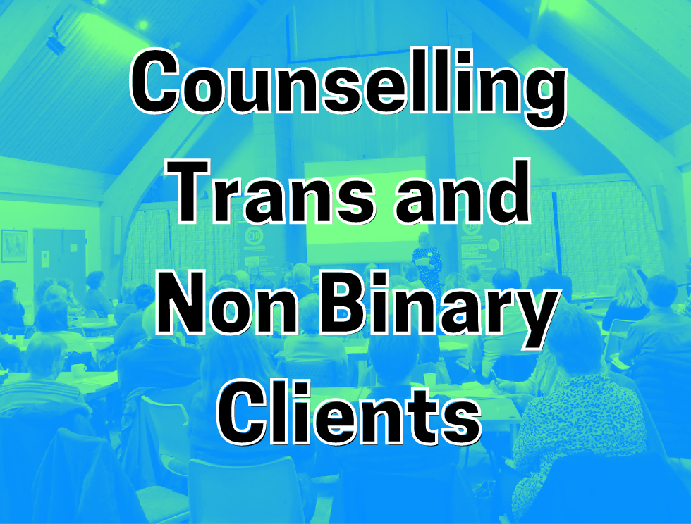 Counselling Trans and Non binary Clients: Room full of people watching presentation