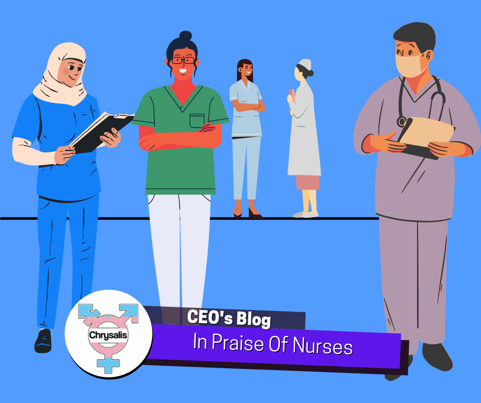 Various medical professionals on a blue background. Text reads: CEO's Blog In Praise Of Nurses