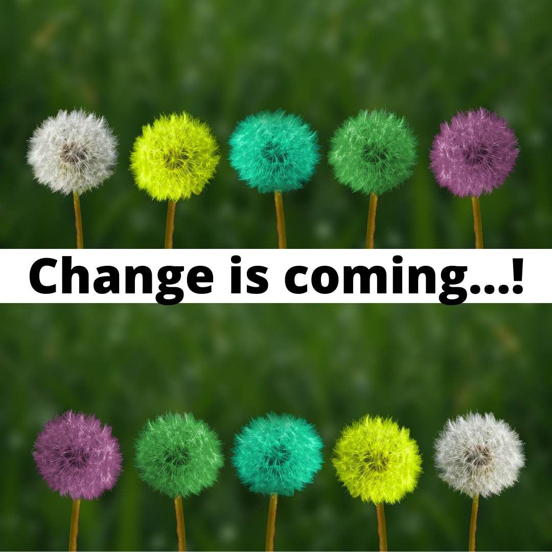 """Two rows of coloured dandelion puffs above and below the words """"Change is coming...!"""""""